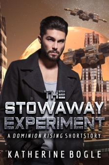 The Stowaway Experiment_cover only_remake